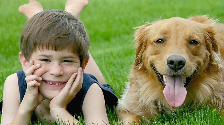 Animal de compagnie : les bénéfices pour votre famille
