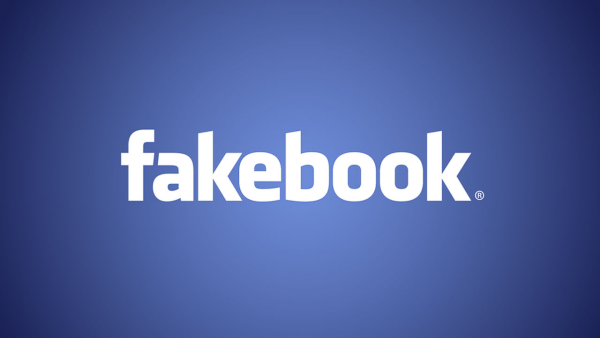 Entrepreunariat : S'inspirer de la réussite Facebook