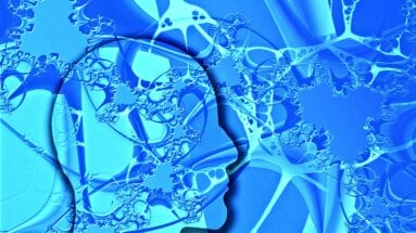 Neurosciences : le cas de J.C, Italien qui parle Français couramment par accident