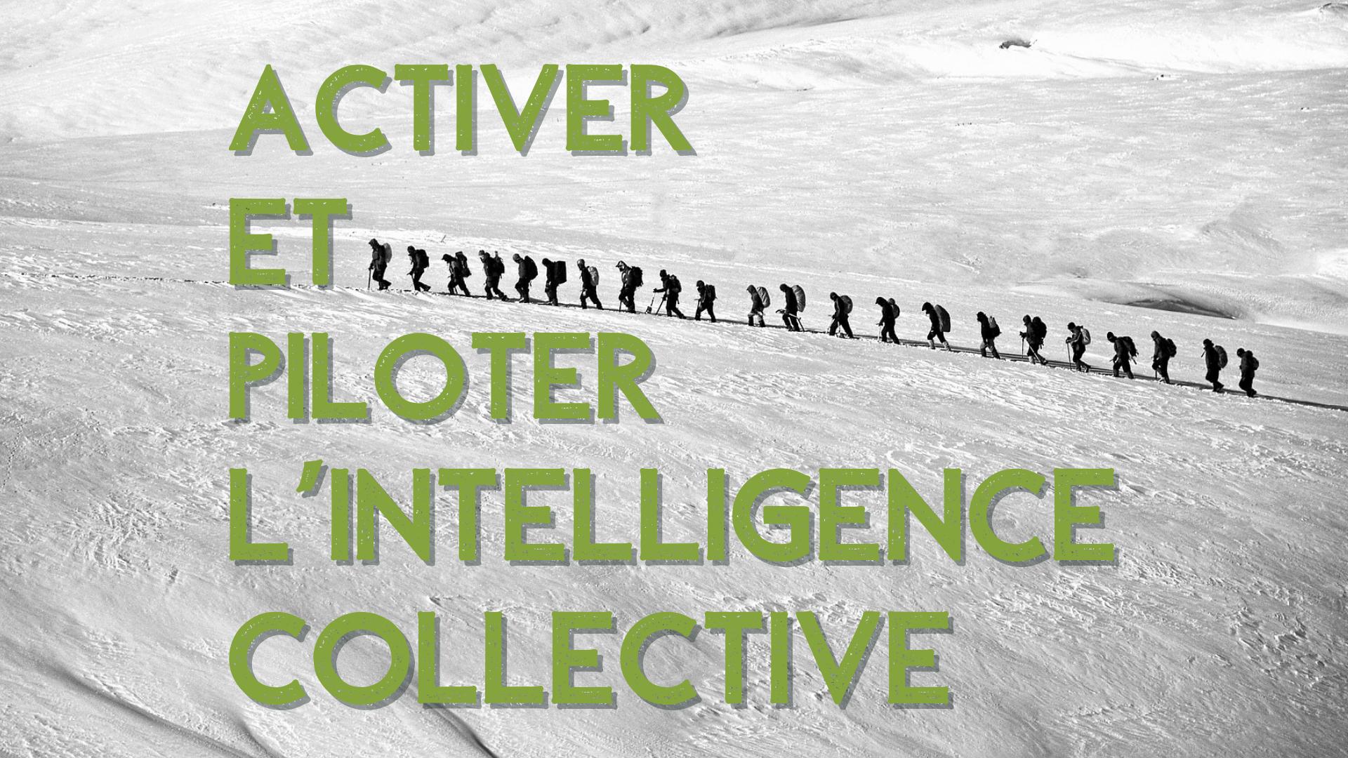 Activer et piloter l\'Intelligence collective
